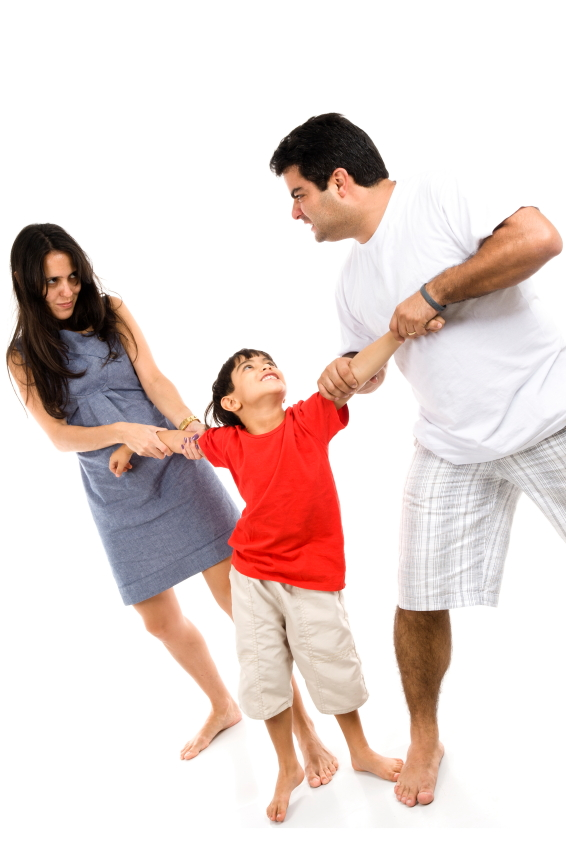 Understanding Family Law: Spousal Disputes and Child Custody