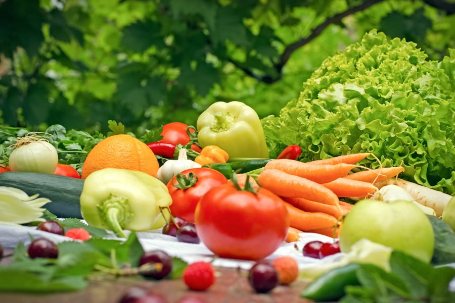 the importance of organic food in Organic food and its effects on health the public is becoming increasingly aware of the importance of healthy nutrition for general health and overall well-being.