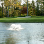 Pond Maintenance: A Few Tips To Keep Pond Water Clean