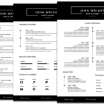 Factors You Must Consider About Most Professional Resume Templates