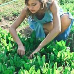 How To Make Your Garden Truly Self-Sufficient