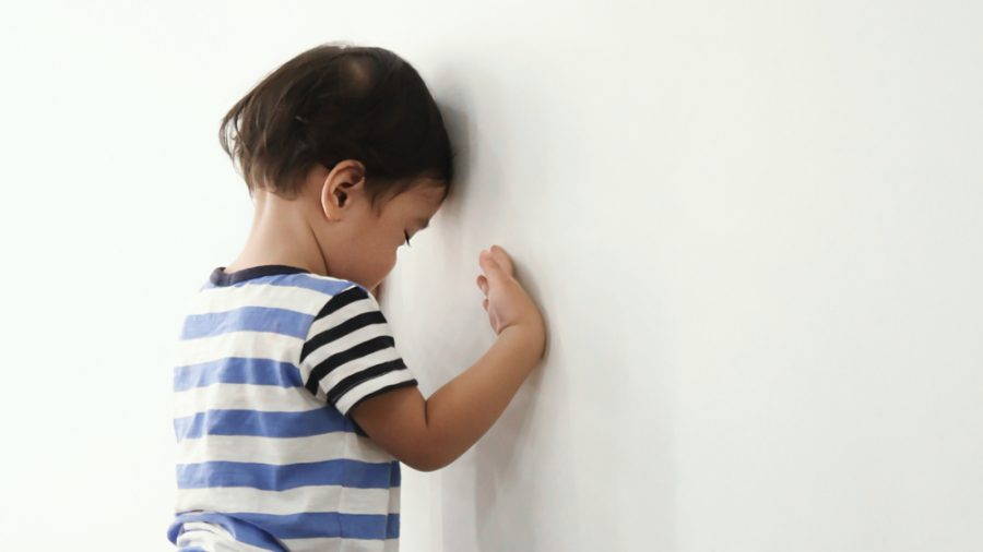 The Need For A Neuropsychological Evaluation To Determine Behavioral Changes In A Child
