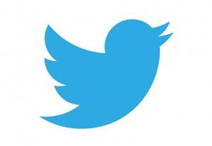 Tiwtter-logo-2013-300x206