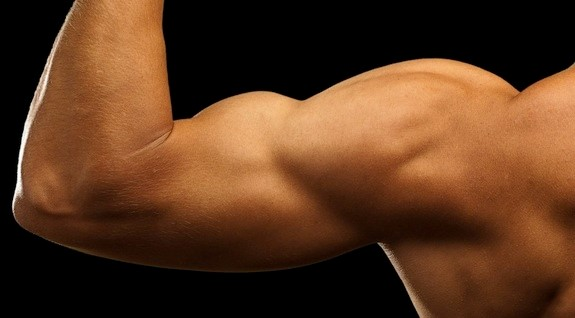 Body Building – The Vital Need Of It In Today's World