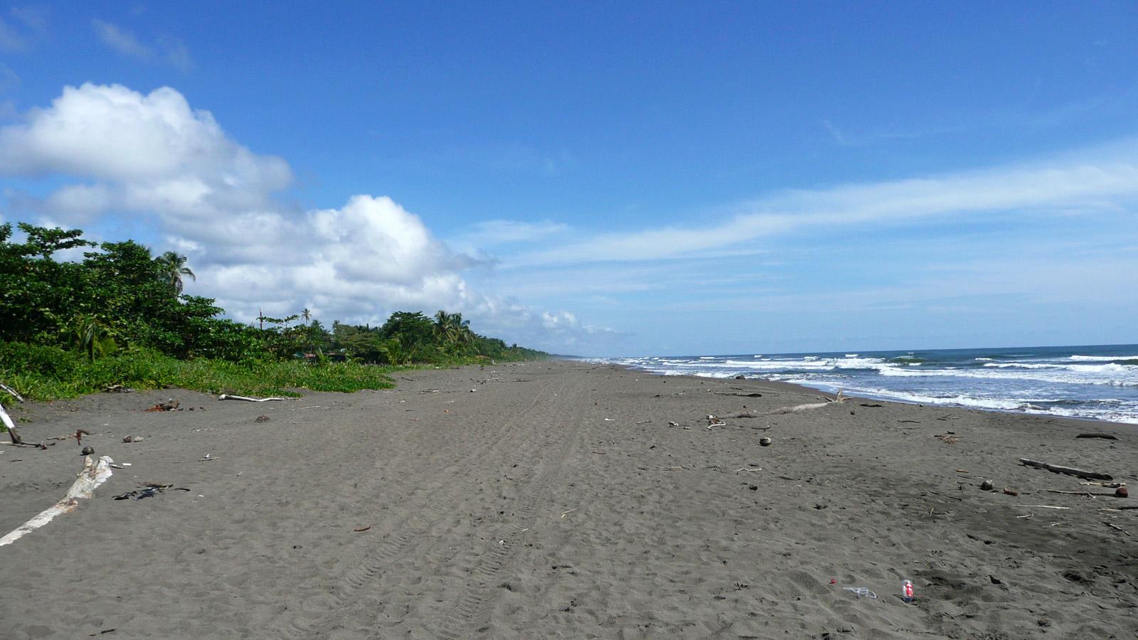 Tortuguero beach Costa Rica