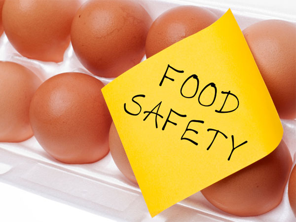 The Importance Of Food Safety Equipment