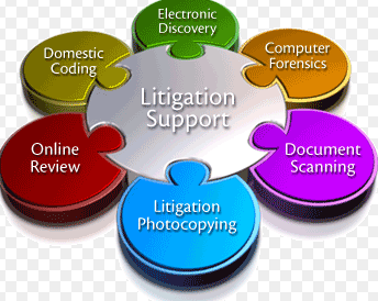 Litigation Software