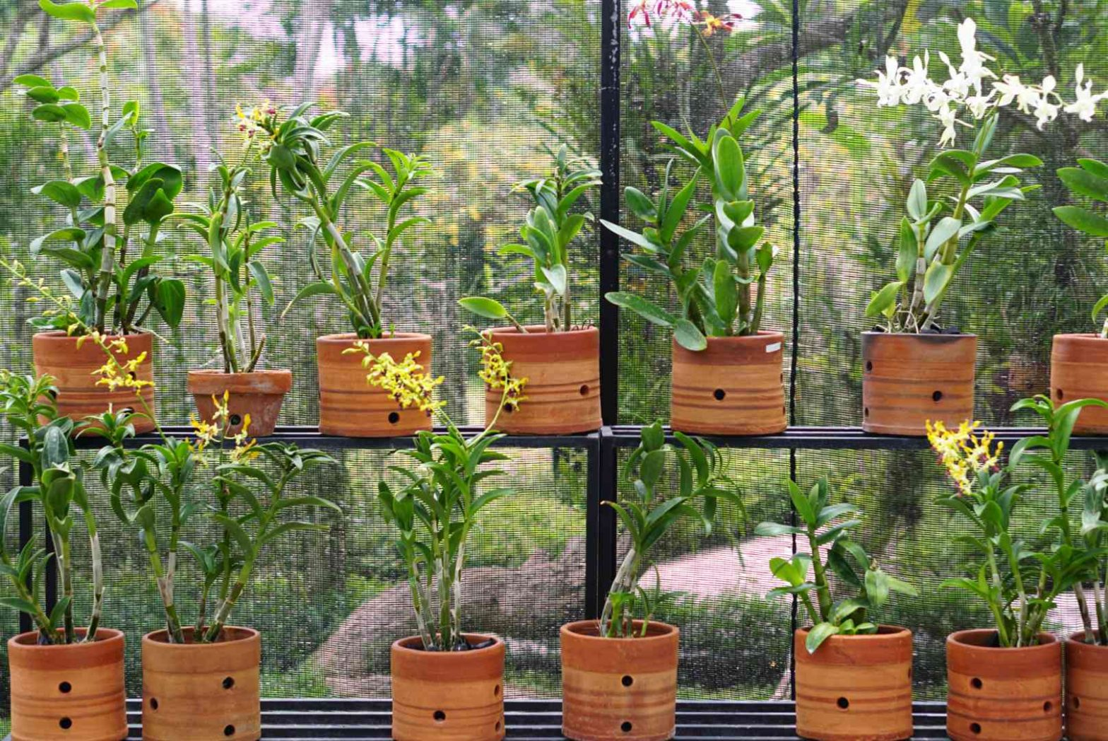Durable Materials That Can Be Used For Various Products In Your Plant